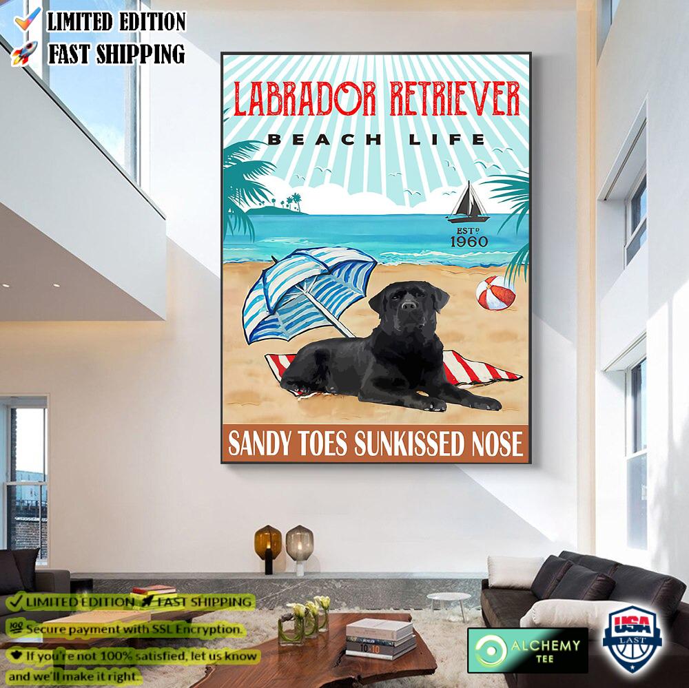 Labrador Retriever Beach Life Sandy Toes Sunkissed Nose Poster